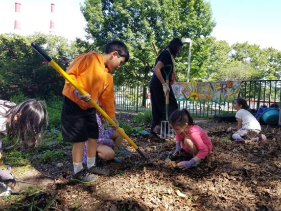 Learning to use the tools in RI Living Library & Think Park