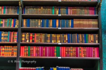 The Royal Portuguese Reading Room in Rio de Janeiro, MG_8948-6