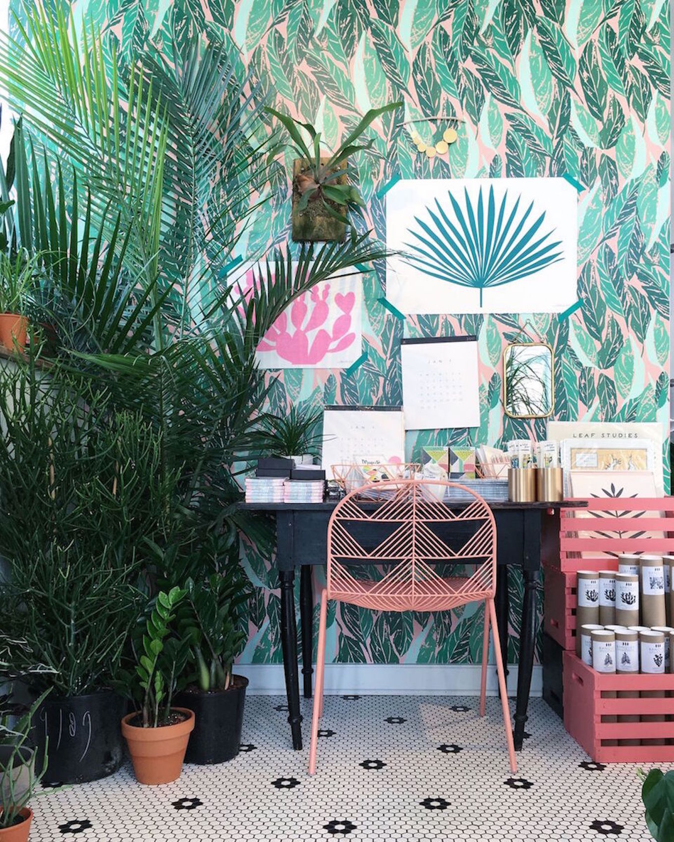 Decorate Your Rooms With Plants   Transform Your Home Into A Tropical  Paradise | Alizu0027s Wonderland