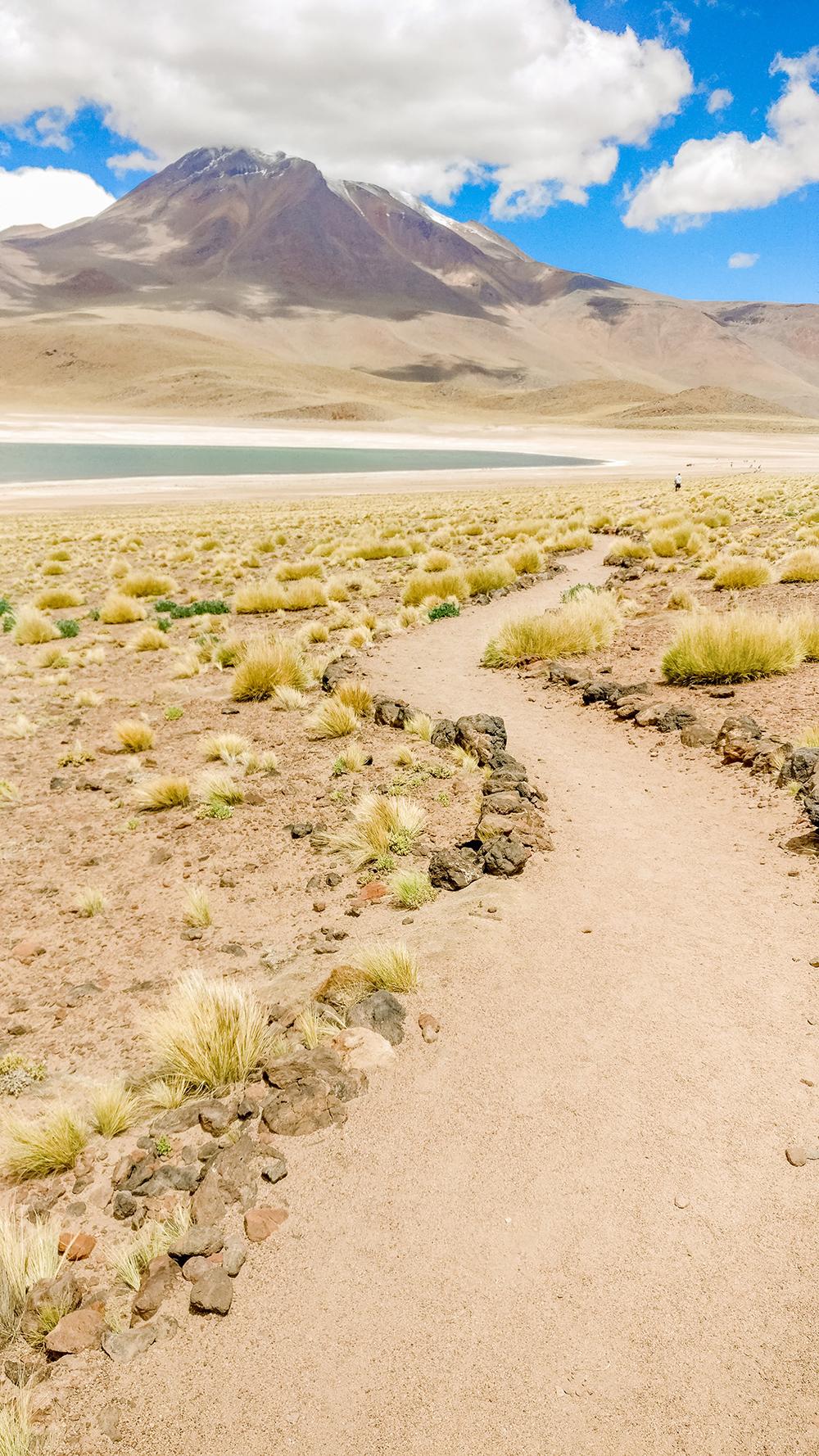 Laguna Miscanti (Lagunas Altiplanicas) - How to plan your perfect trip to San Pedro de Atacama, Chile? | Aliz's Wonderland