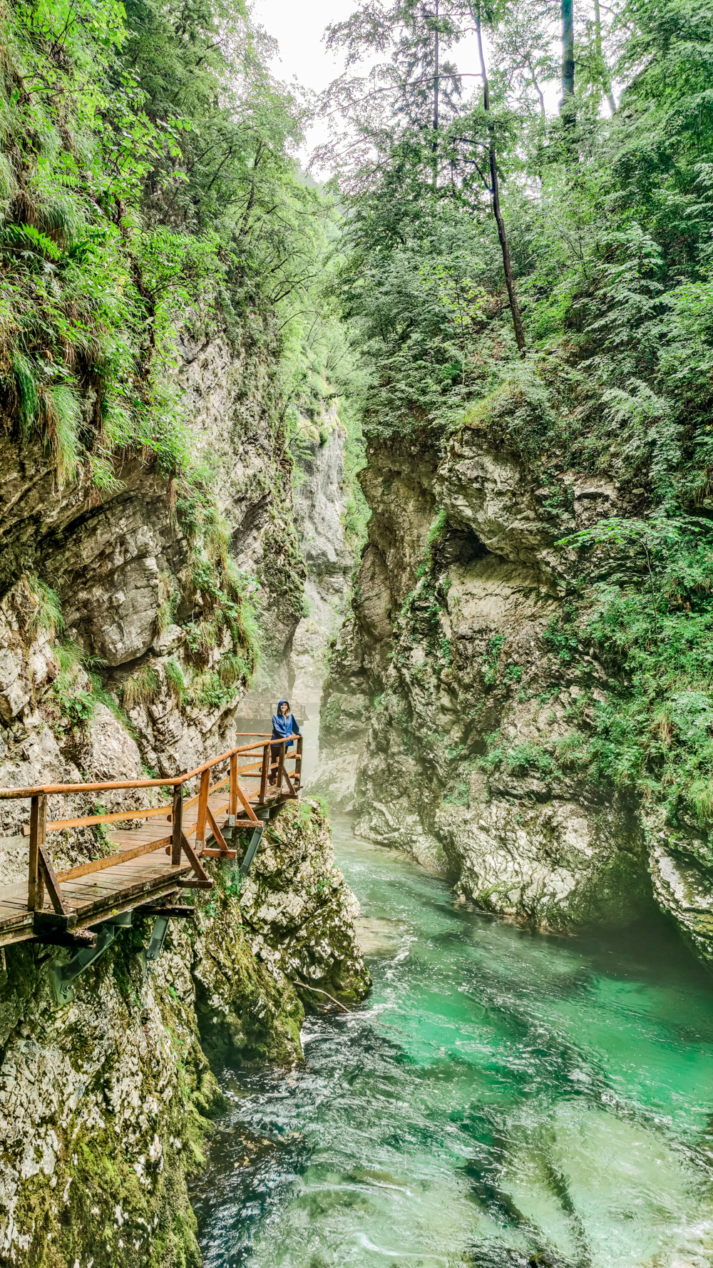 Vintgar Gorge, a must-visit natural gem next to Bled - 4-day Slovenia travel itinerary for the best outdoor adventures | Aliz's Wonderland
