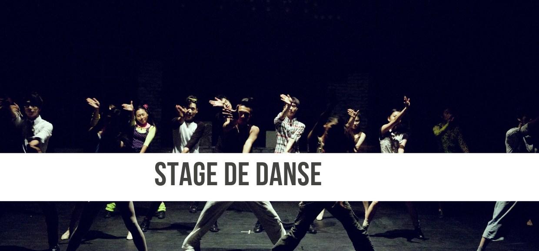 Stage de danse les 16 & 17 mars 2019