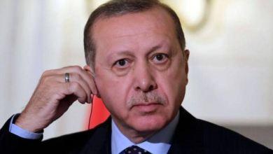 بعد ثبات الموقف المصري.. الرئيس التركي يواصل التودد للقاهرة