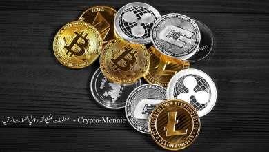 معلومات تمنع الخسارة في العملات الرقمية - Crypto-Monnie