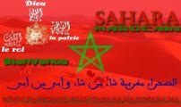 الصحراء المغربية – قضية عادلة ولكن بمحامٍ فاشل –