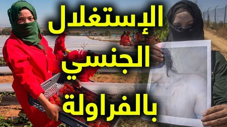 إسبانيا : التحقيق مع متهم بإستغلال عاملات مغربيات