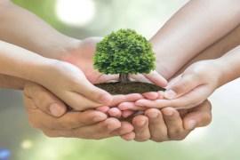 Charity Needn't Cost a Cent SALMA SANWARI