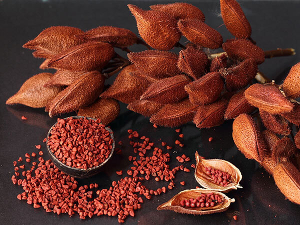 Image result for achiote