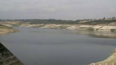 Photo of زراعة 30 ألف أصبعية سمكية في بحيرة الرستن بحمص