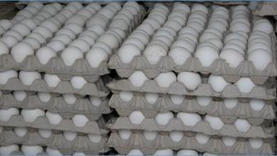 Photo of دواجن طرطوس: إنجاز معمل إنتاج أطباق البيض نهاية العام .. بطاقة 8 ملايين طبق سنوياً