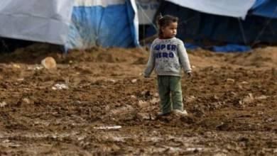 "Photo of الأمم المتحدة: سوريا غير مسؤولة عن مصير ""أيتام داعش"" في مخيم الهول"
