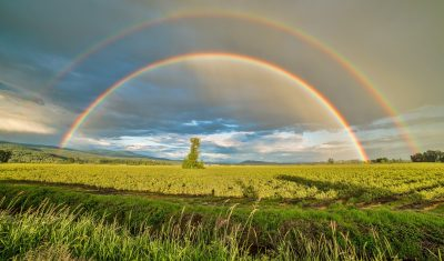 crop-field-under-rainbow-and-cloudy-skies-at-dayime-1542495