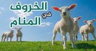 تفسير حلم امواج البحر رؤيه البحر هائج في المنام اروع روعه