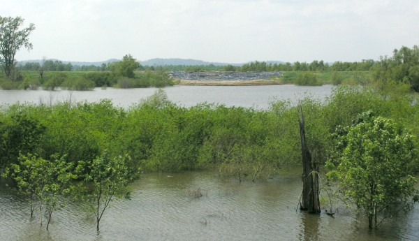 Levee repair along the Big Muddy