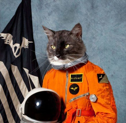 Klaxons surfing the void review