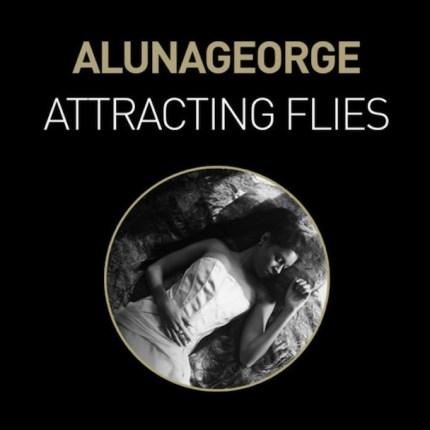 Attracting Flies by AlunaGeorge