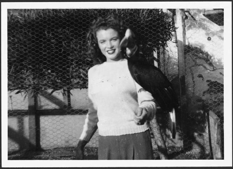Norma Jeane With Hornbill