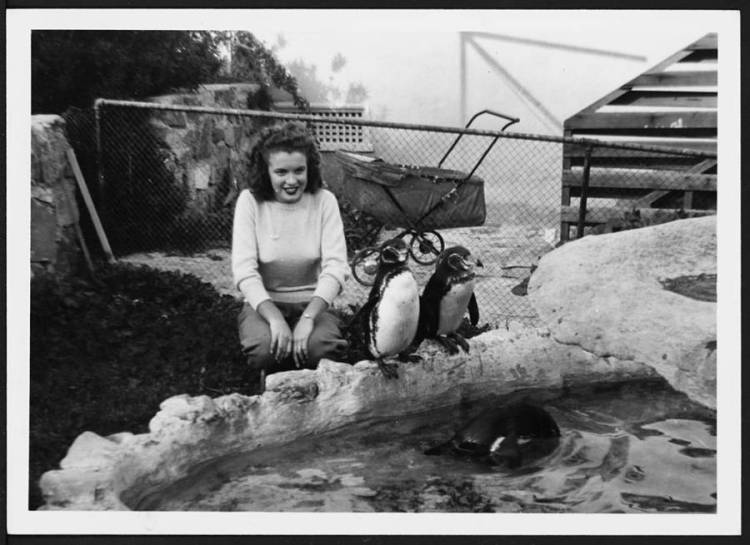 Norma Jeane With Penguins