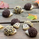 hedgehog cookies - All that's Jas