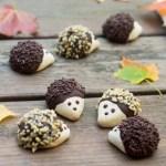 hedgehog cookies, shortbread cookies, chocolate, fall, autumn, Bosnia, Croatia