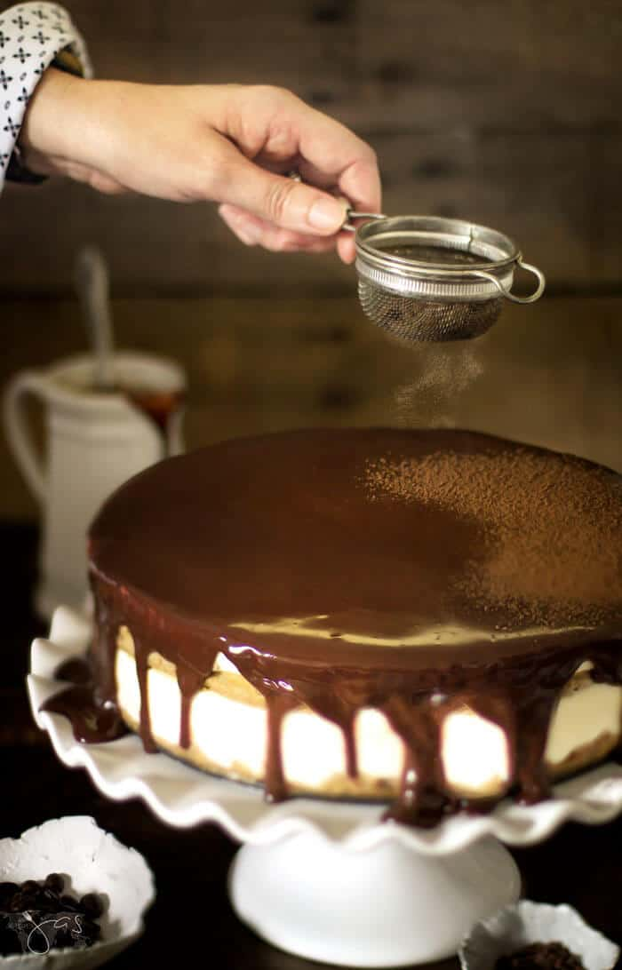 dusting tiramisu cheesecake with cocoa powder