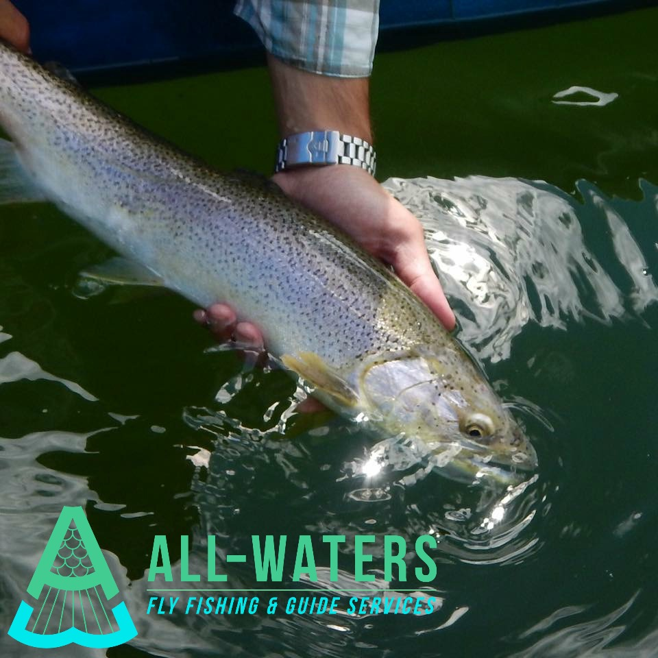 Sea Run Cutthroat All-Waters Logo