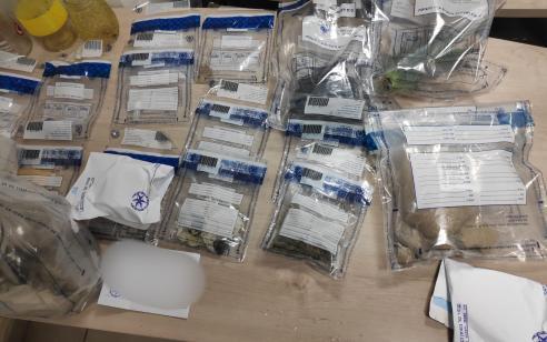 ערב פורים המשטרה פשטה על מעבדה של סמים מסוכנים מסוג  קטמין הידוע גם כסם האונס, LSD, MDMA  וסמים מסוכנים נוספים
