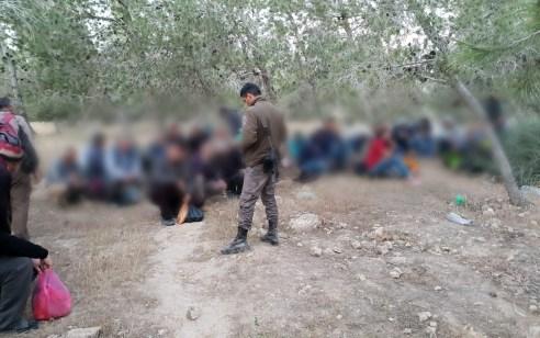 הבוקר נעצרו 89 ערבים שוהים בלתי חוקיים בסמוך למעבר מיתר