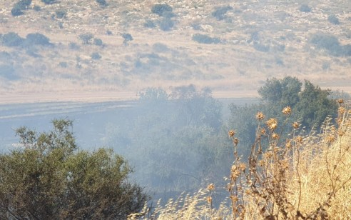 צוותי כיבוי רבים ומטוסים פעלו בשריפת יער סמוך לבית שמש