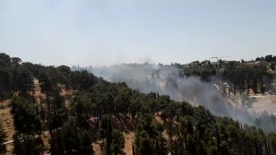 כוחות רבים פועלים בפעם השניה היום בשריפה יער השלום  בירושלים