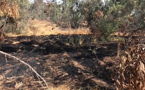 טרור הבלונים: 3 שריפות נגרמו היום מבלוני תבערה באזור אשכול