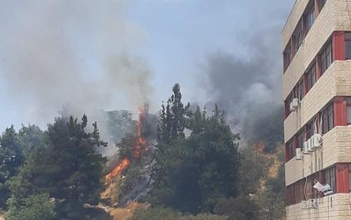 רחוב בית הדפוס בירושלים נסגר לזמן קצר עקב שריפה יער שהתפשטה לחניון – 6 רכבים עלו באש