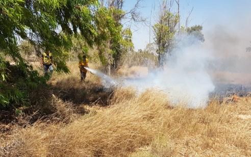 טרור הבלונים: משעות הבוקר פרצו 29 שריפות בעוטף עזה
