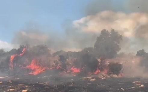 צפו: שריפת יער וחורש גדולה משתוללת באיזור קיבוץ בית ניר, 15 צוותי כיבוי וארבעה מטוסים פועלים