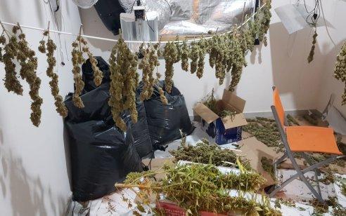 מעבדה לגידול סמים נתפסה הלילה בבית שמש – מעצרם של 2 חשודים שנתפסו במקום הוארך