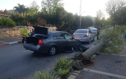 נהג רכב בן 22 התנגש בעץ בהוד השרון – מצבו בינוני