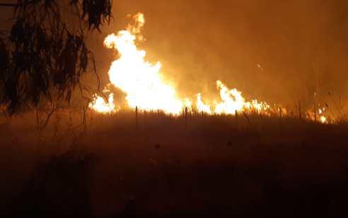 חשד להצתה: הושגה שליטה על שריפה גדולה שפרצה סמוך לאלעד