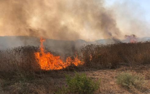 שריפת ענק סמוך לחוף דור בכרמל: 20 צוותי כיבוי בסיוע מתנדבים ומסוק משטרתי פועלים במקום