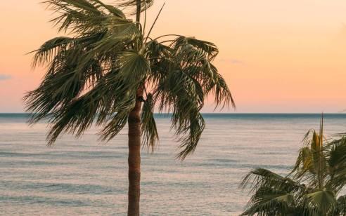 הממשלה אישרה: סגר בסוף שבוע הבא, חופי הים יישארו פתוחים