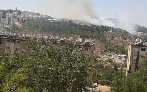 שריפה ביער בעין כרם בירושלים: 24 צוותים ושישה מטוסים פעלו לכיבוי האש
