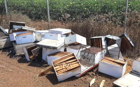 עשרות כוורות וחלות דבש נגנבו בגליל המערבי בשווי עשרות אלפי שקלים