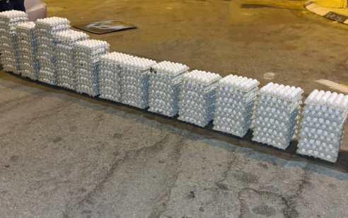 תוך 24 שעות: מפקחי משרד החקלאות מנעו את שיווקן של כ-9,000 ביצים שאינן ראויות למאכל