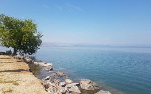 לראשונה מזה 23 שנה: רוב מקורות המים של ישראל מעל לקווים ירוקים