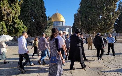 לאחר 19 יום שהיה סגור: הר הבית נפתח מחדש לעליית וכניסת יהודים