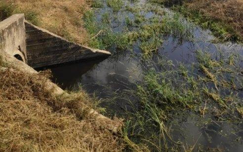 משרד הבריאות: שרידים של הווריאנט ההודי נמצאו במי שפכים באשקלון – חשש שתושבים נדבקו