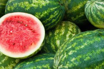 7 Πράγματα που δεν Ξέρατε για το Απόλυτο Καλοκαιρινό Φρούτο, το Καρπούζι!