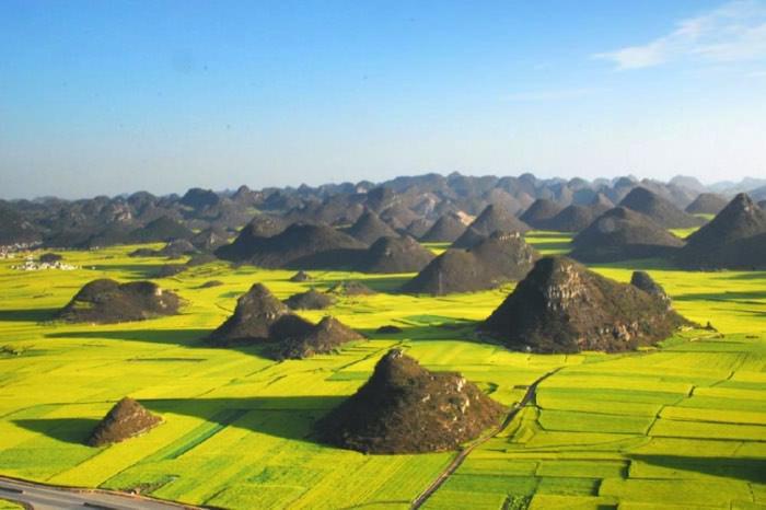 Χωράφια με κράμβη στο Luoping, Κίνα