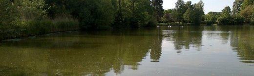 Fishing in Godalming: Broadwater
