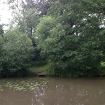 Lake angling in the Dorking area: Coach Road Pond