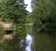 Fishing in Guildford